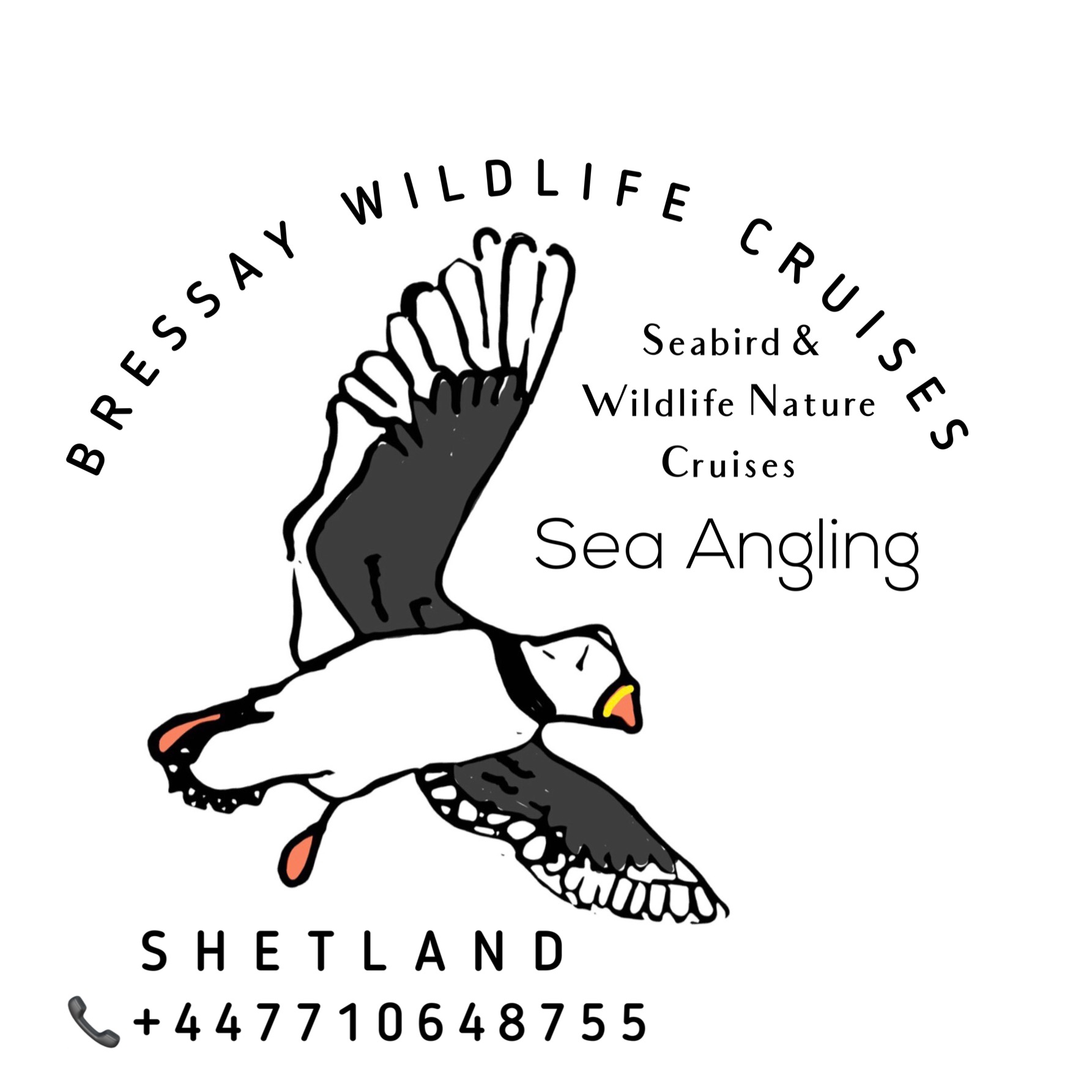 BRESSAY WILDLIFE CRUISES