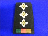 CAPT Rank Slide. Pair (0212)