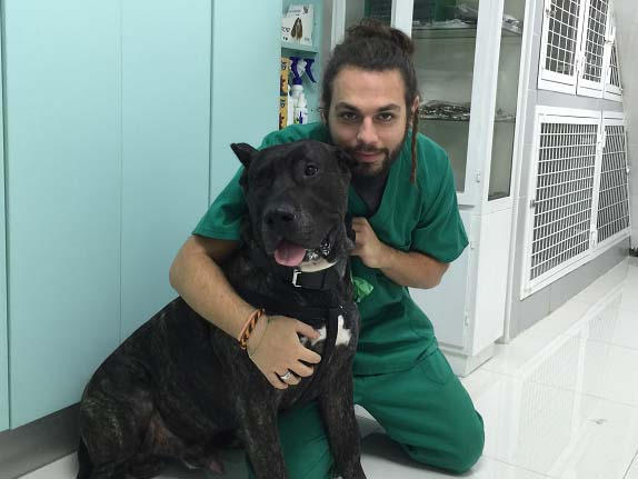 Rubén Liñares, auxiliar en veterinarios Madrid