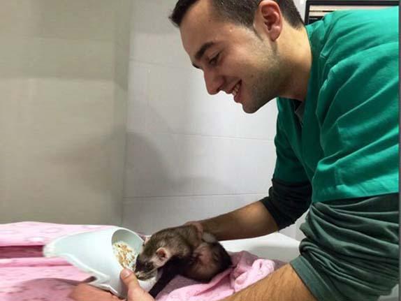 Jesús Urbina, auxiliar en veterinarios Madrid