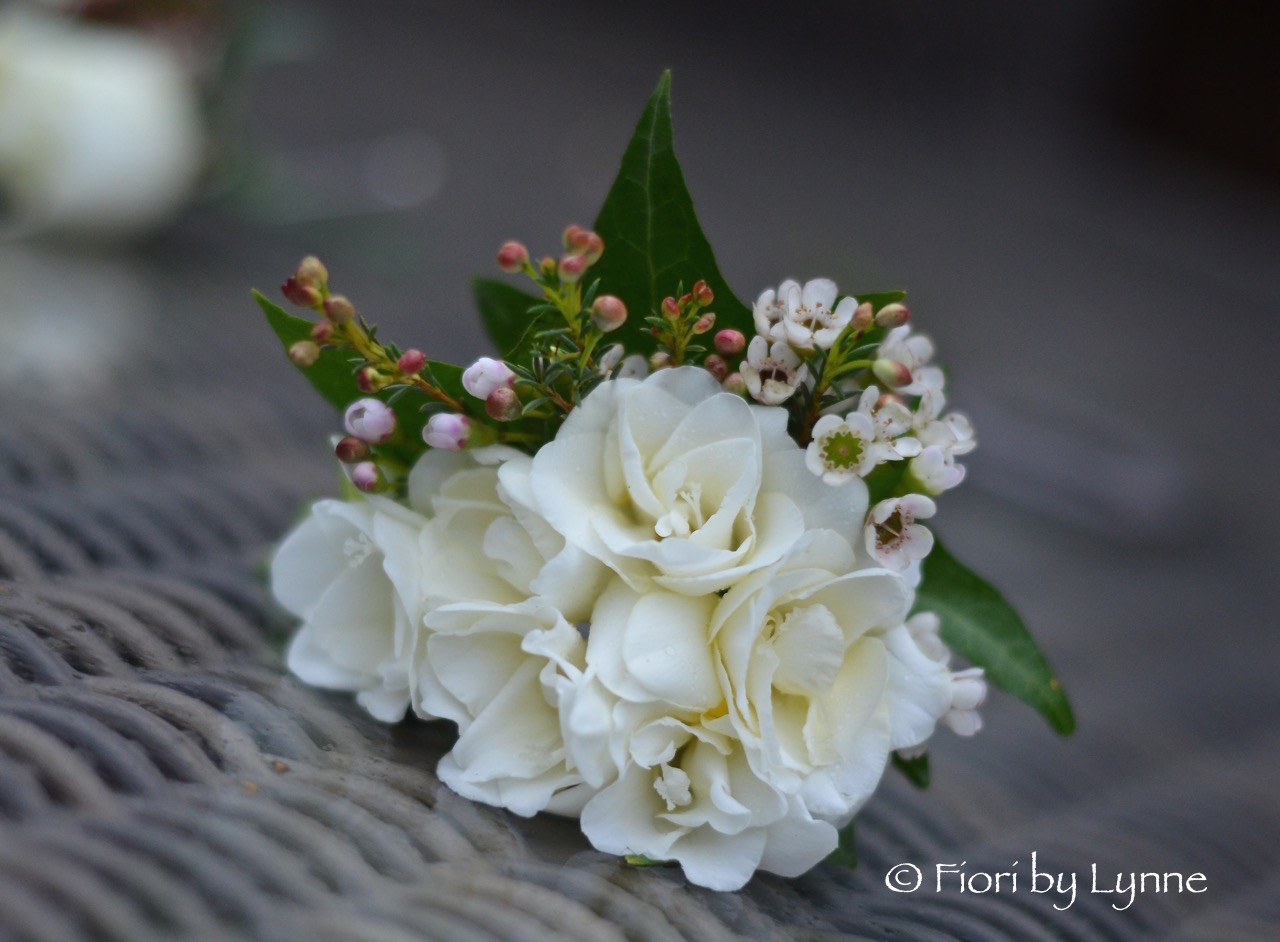 corsage-winter-freesia-waxflower-ivy.jpg