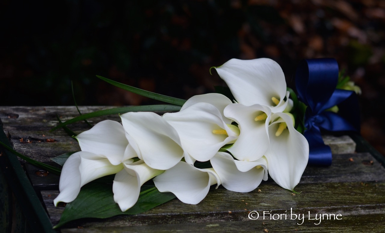 overarm-bouquet-calla-lilies-white-simple-elegant.jpg