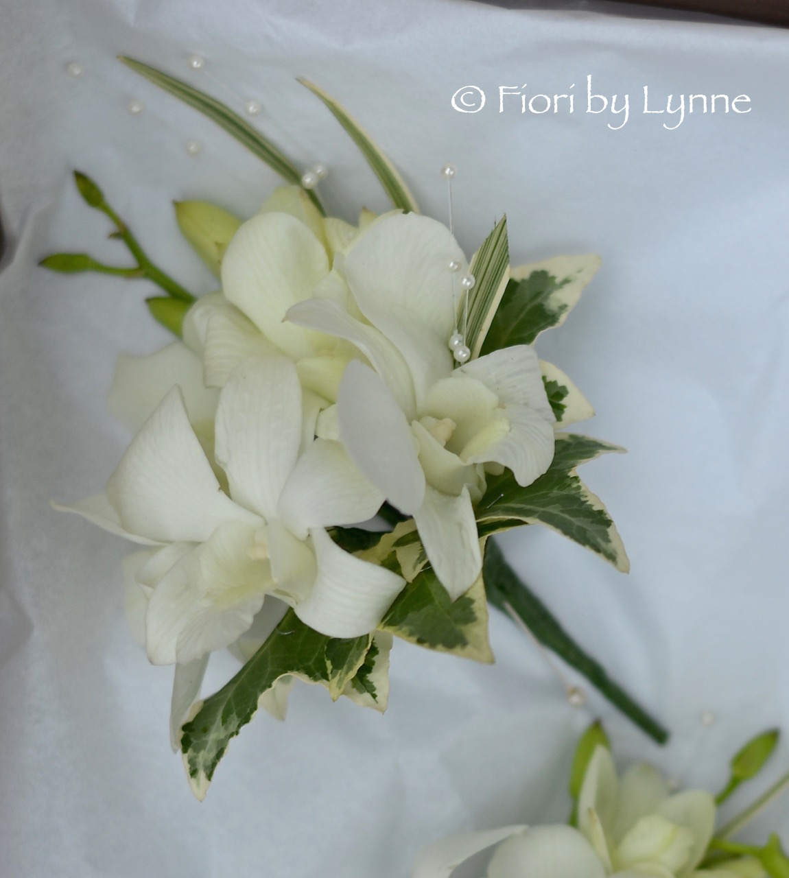 white-orchidpearl-corsage.jpg