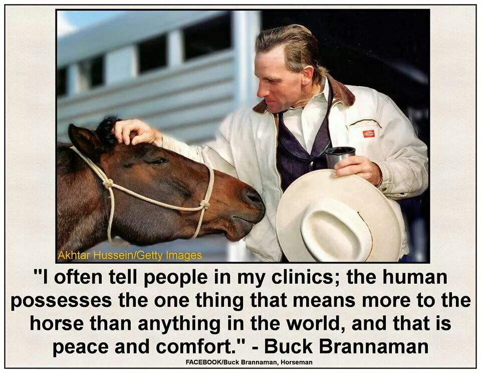 Buck Branaman pic and quote