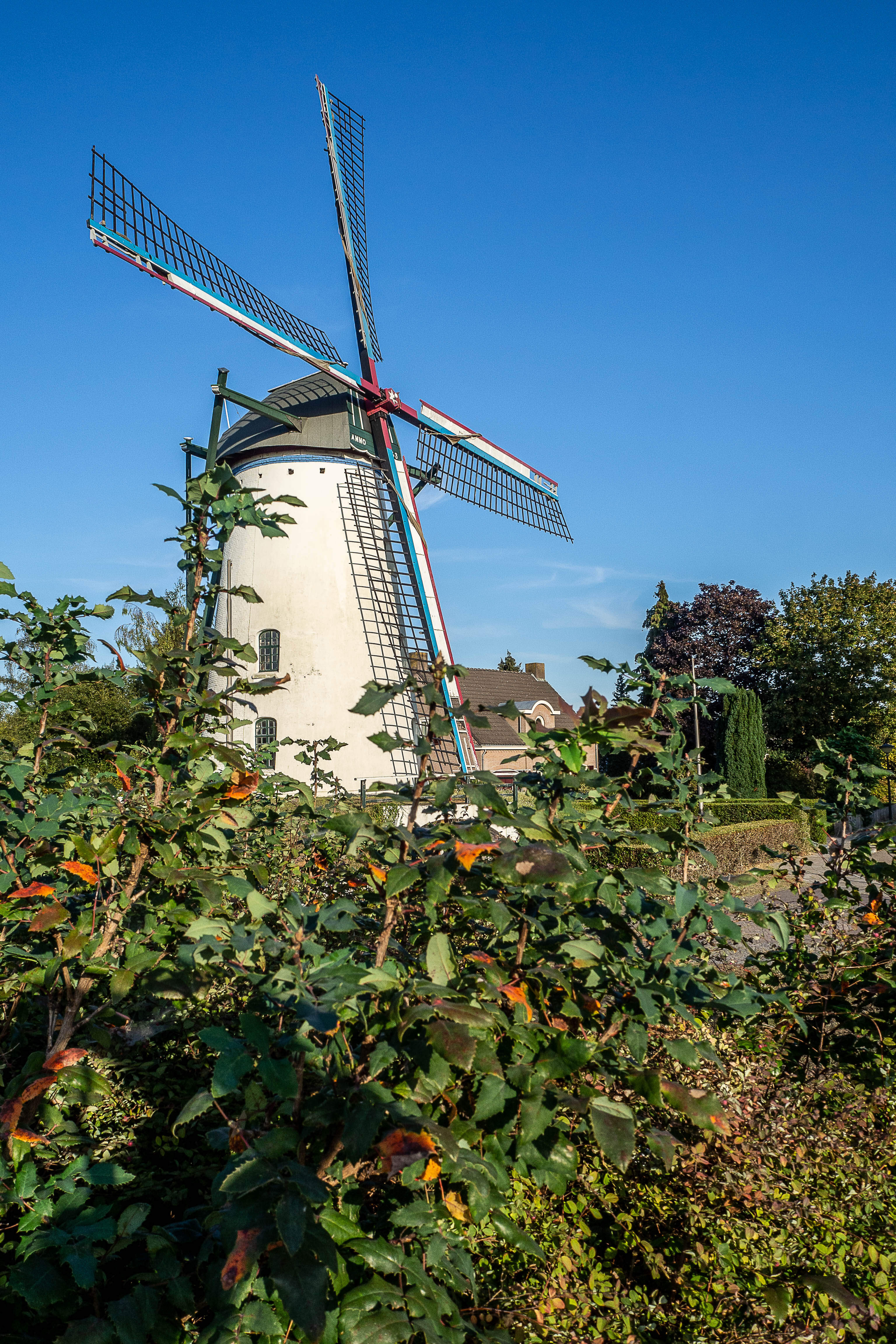 De windmolen 't Nupke in Geldrop