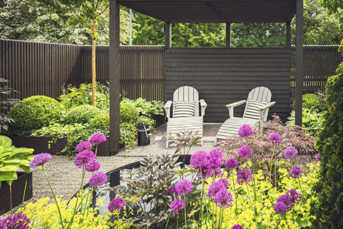 small contemporary area with alliums and a pergola
