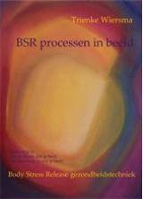 BSRprocessen-68f26c1fc7bcbd1d0eac5a6149fc43bfjpg