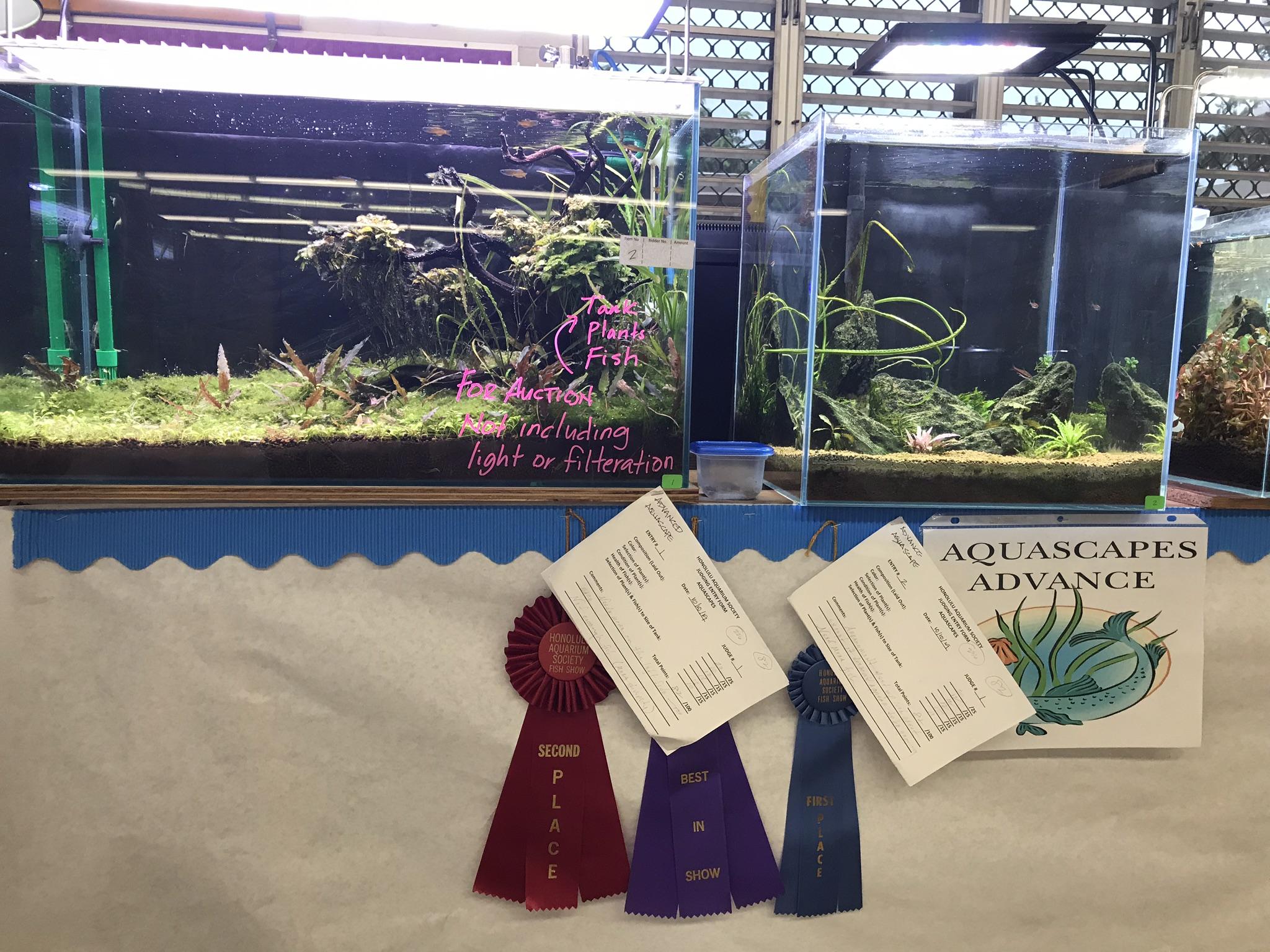 Welcome To Honolulu Aquarium Society