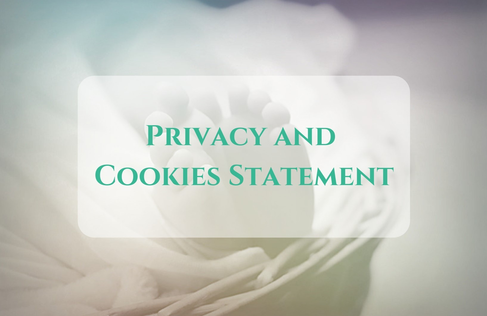 Privacy and Cookies Statement for Mo Chuisle Placenta Encapsulation