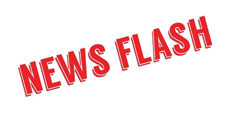 Logo News Flashjpg