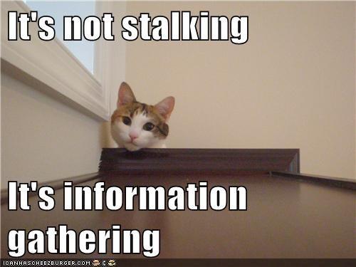 Its not stalkingjpg