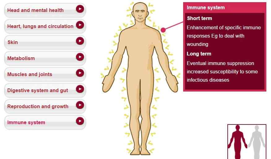 Immune system, infectious diseases, wounds, immune response, immune suppression