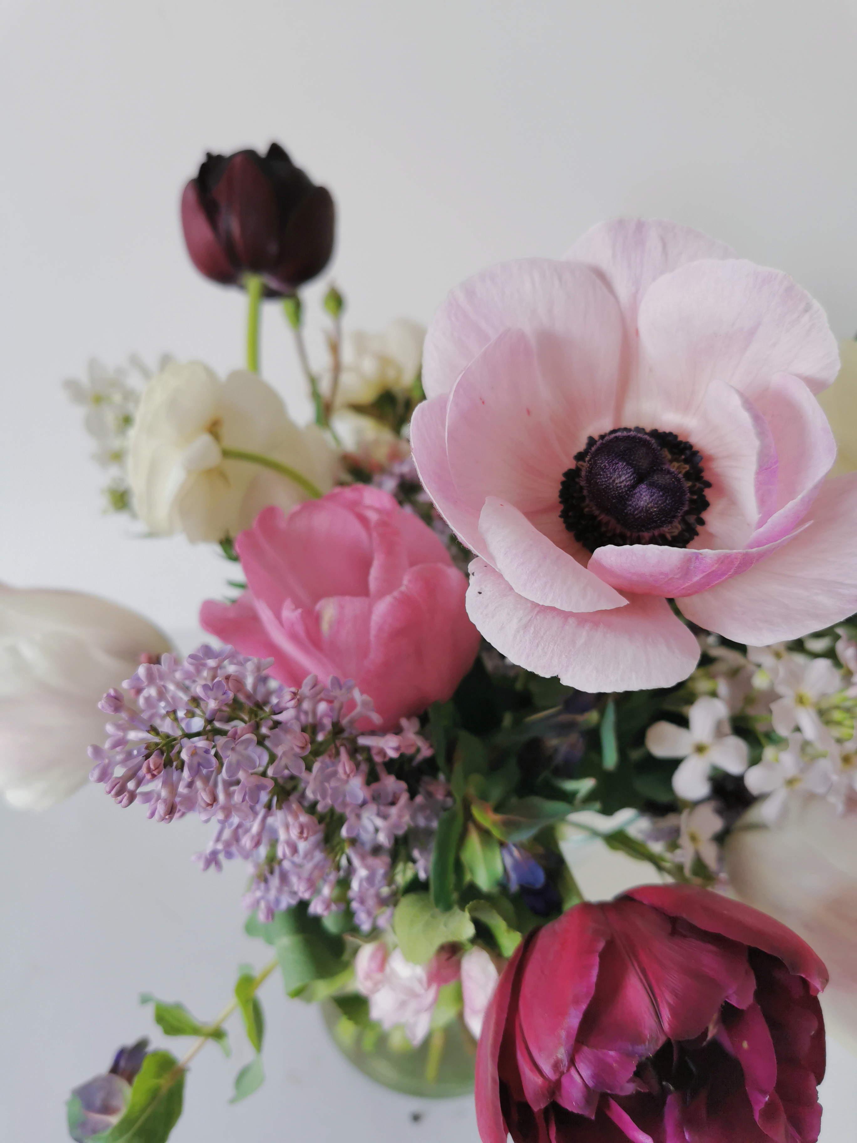Flower Delivery Dublin   Florists Dublin   Bloom Magic