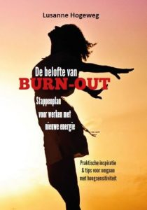 de-belofte-van-burn-out-210x300jpg
