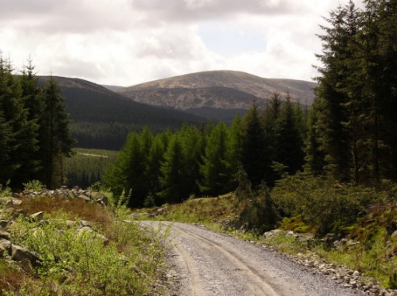 Galloway Forest Park, Britain's largest forest park and a Dark Sky Park.