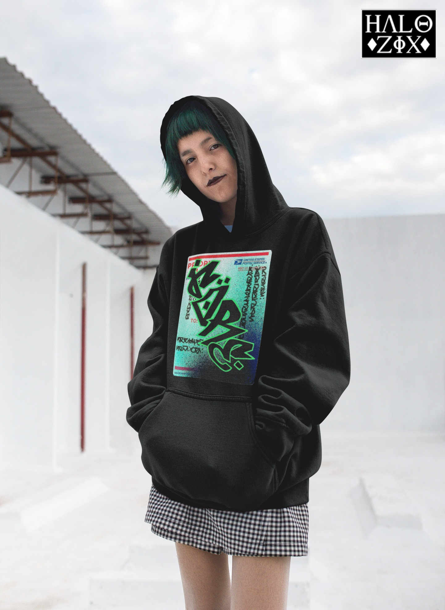 Gore 228 Pullover Hoodie NEW