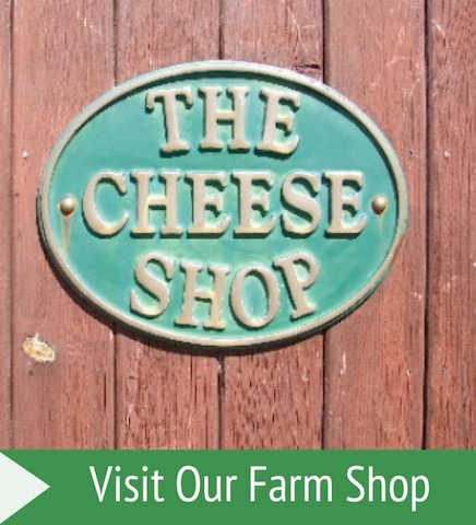 Visit Galloway Farmhouse Cheese Farm Shop, Sorbie, Dumfries and Galloway, Scotland