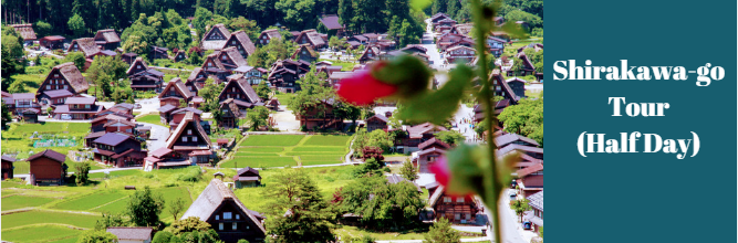 Shirakawago Half Day