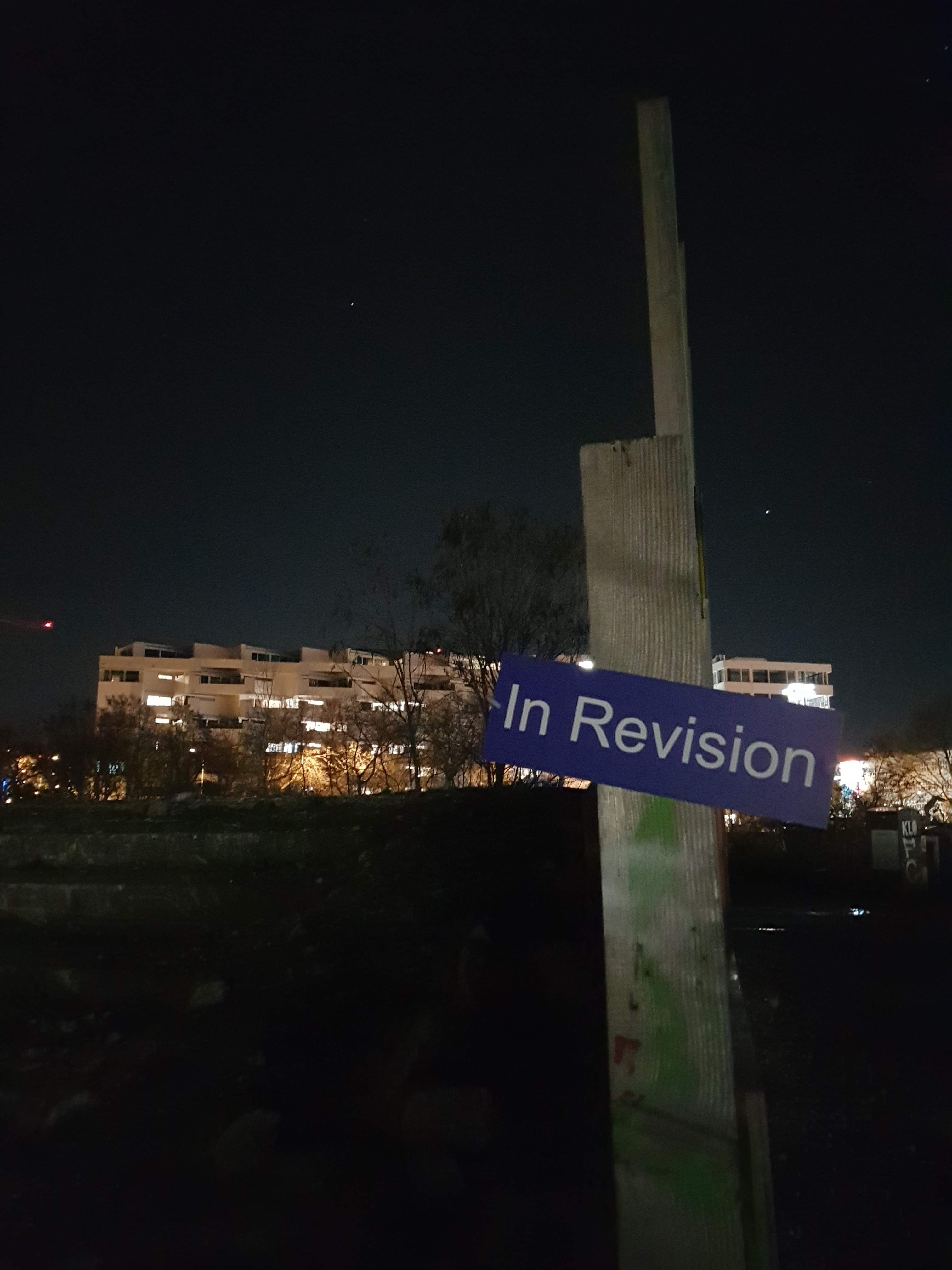 In Revision_Judith Weidmann