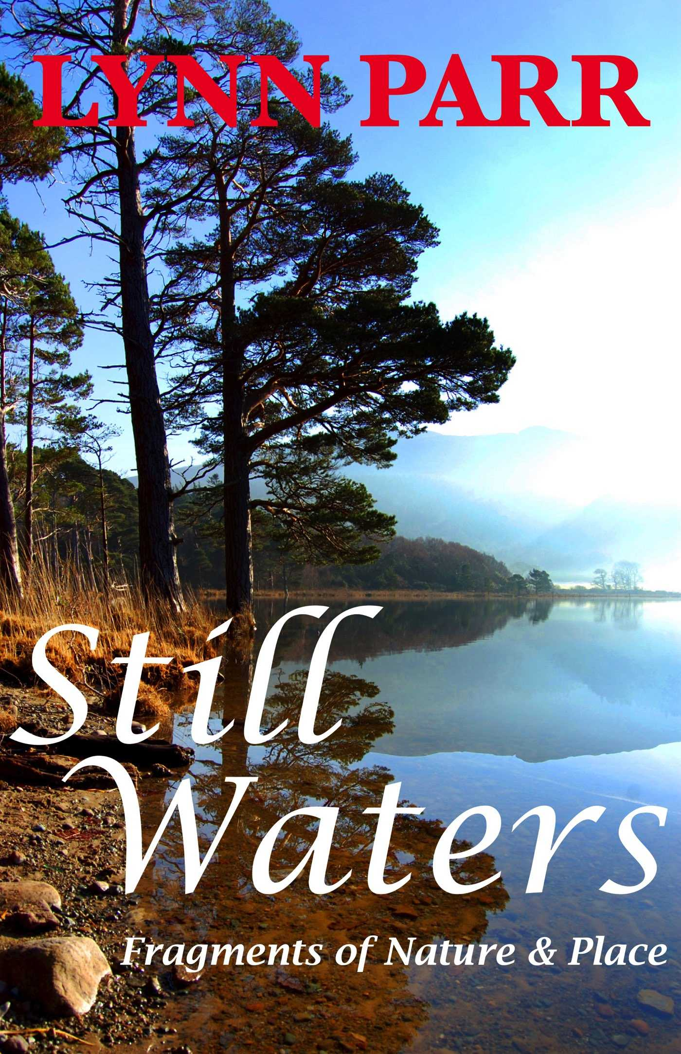 Still Waters: Fragments of Nature & Place