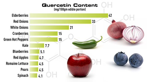 Quercetin-containing-Foodspng