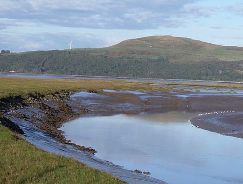 Wigtown Bay Local Nature Reserve