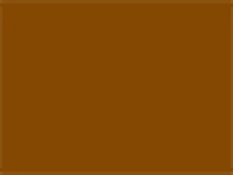 Rosco Supersaturated Paint Raw Sienna 5983 1 Litre