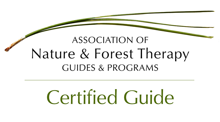 Certified Guidepng