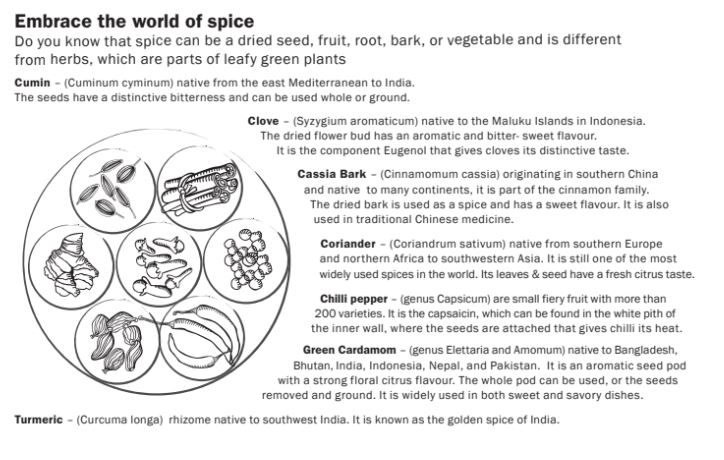 Embrace the world of spice