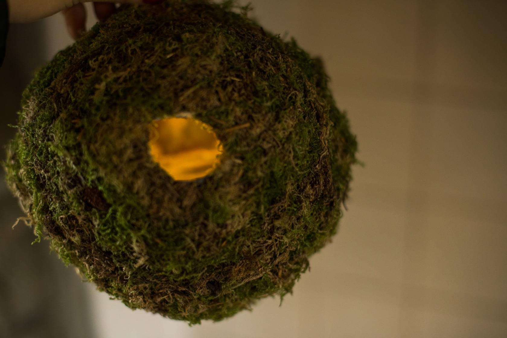 moss, paper, acrylic paint, iron wire, diameter approx 20 - 25 cm, 2020