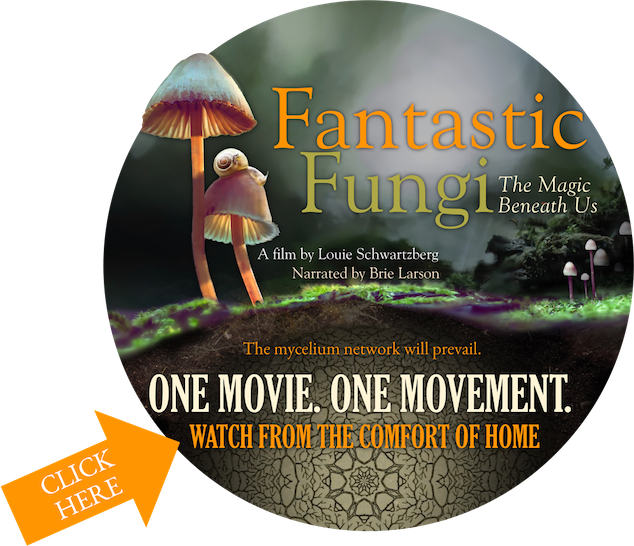Fantastic Fungi - A Movie!