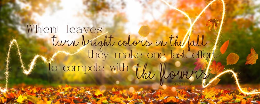 Autumn Poster with Quote