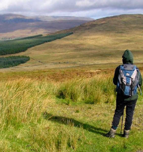 A hillwalker looks out over an expanse of moorland towards the Galloway Hills with a forest to the left