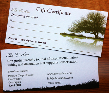 Gift Vouchers – The Perfect Gift!