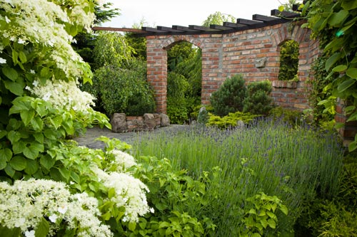 Traditional walled garden with lavender and pergola
