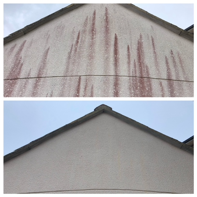 Soft Wash before and after