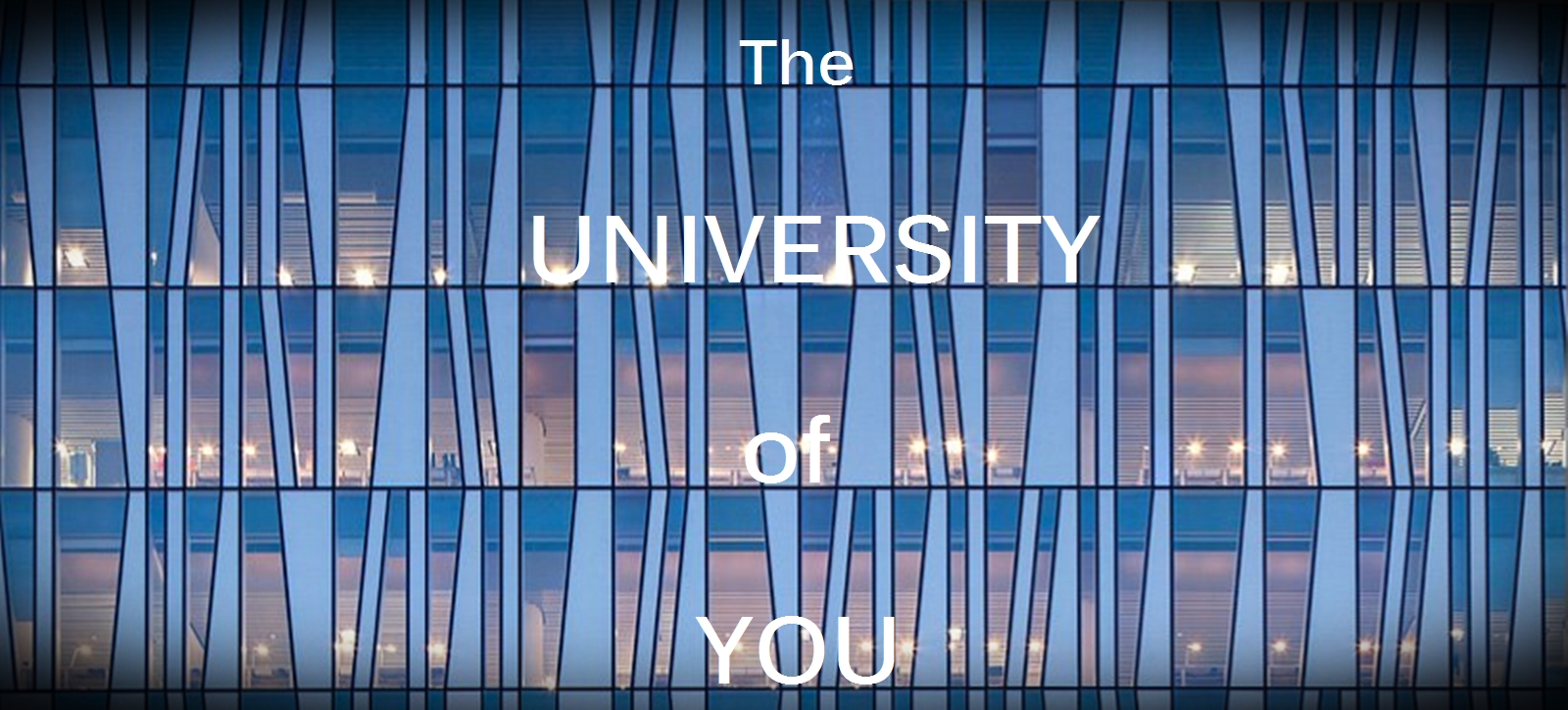 University of You banner