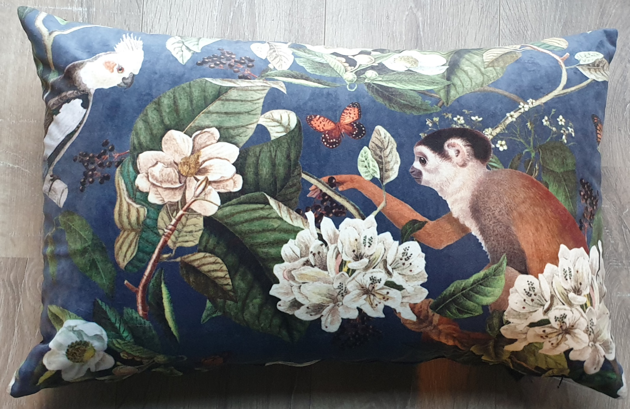 COLMORE, cushion Monkey, velvet