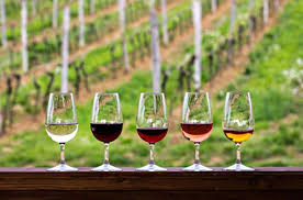 E) France: into the West virtual wine tasting Friday 30th of April @7:30pm