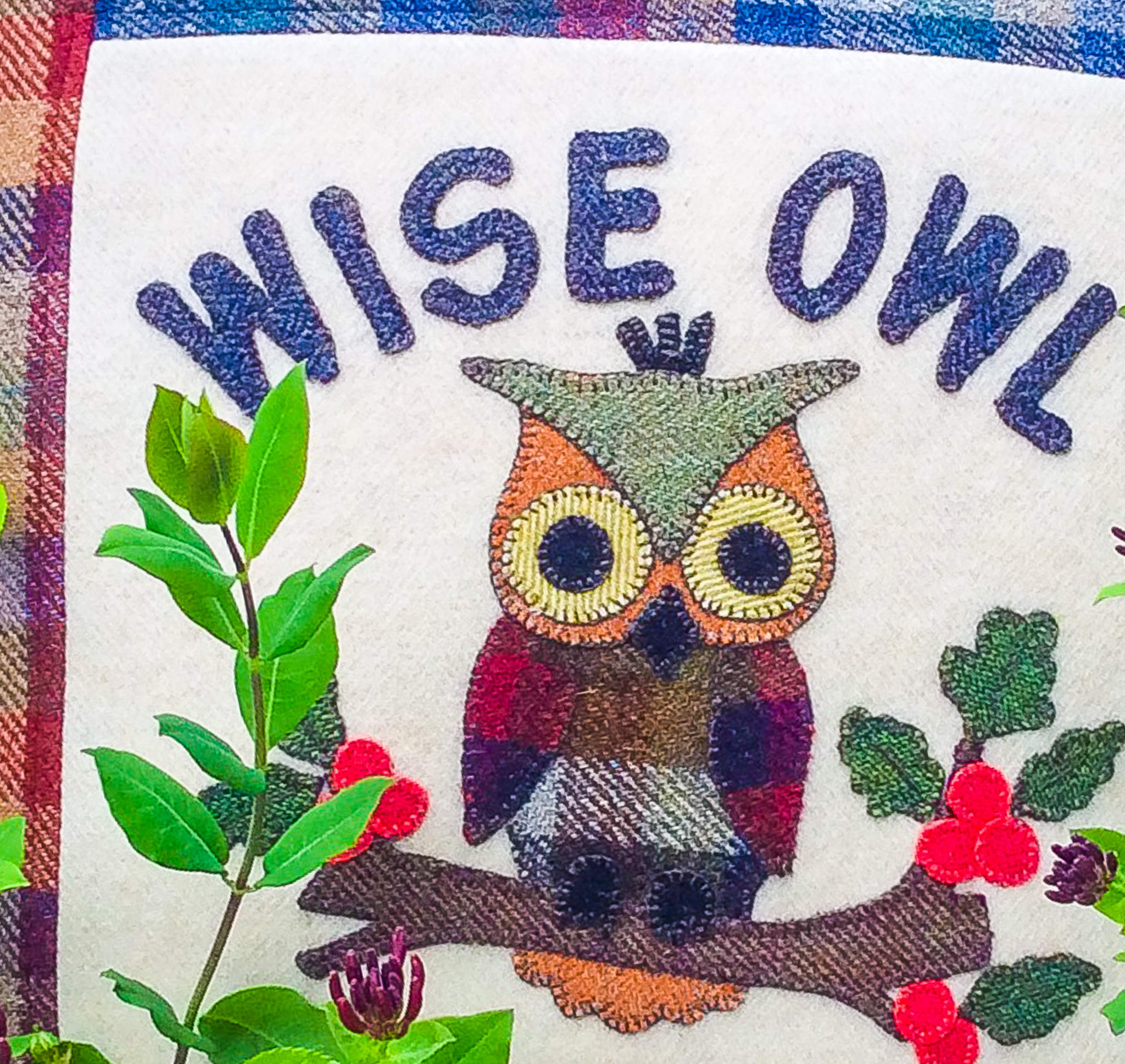 "Fabric Affair: "" Wise owl cushion kit ""."