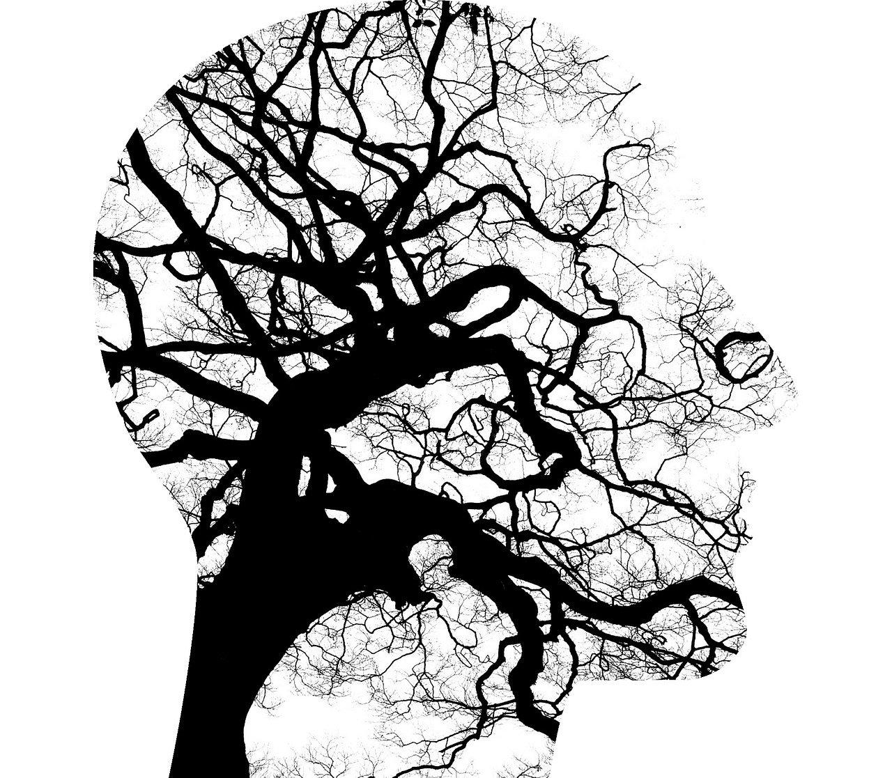 mental-health-2313430_1280jpg