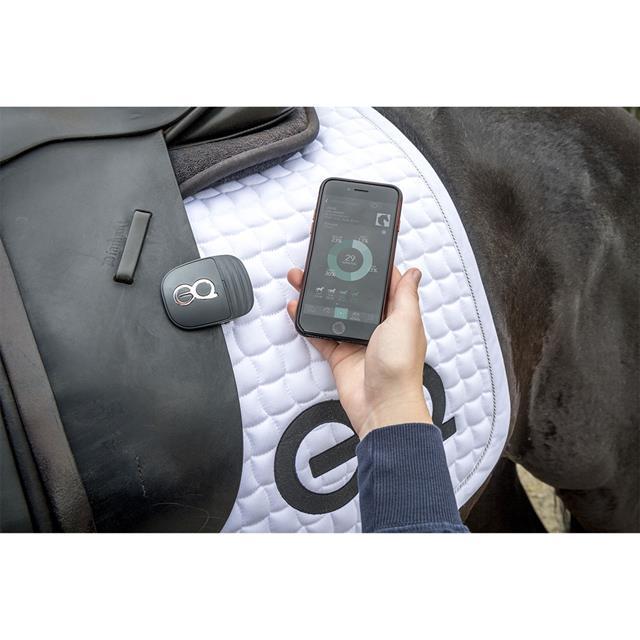 equestic-saddle-clip_640x640_13234jpg