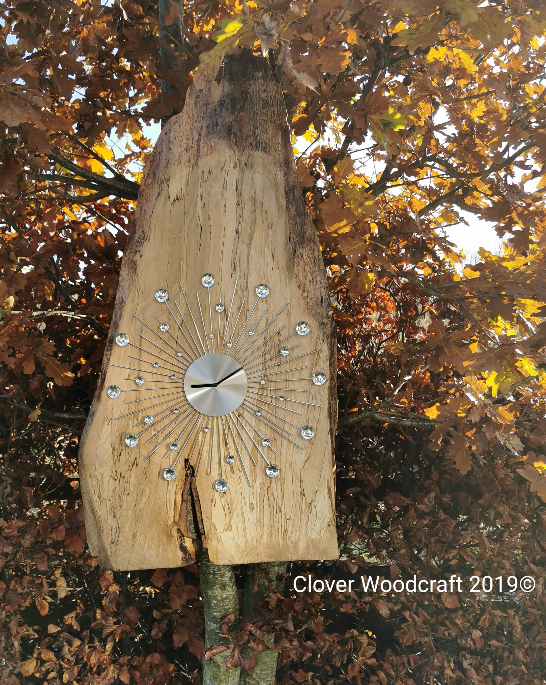 Extra Large Spalted Beech Clock