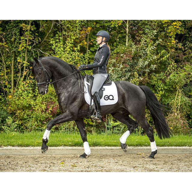 equestic-saddle-clip_640x640_13236jpg