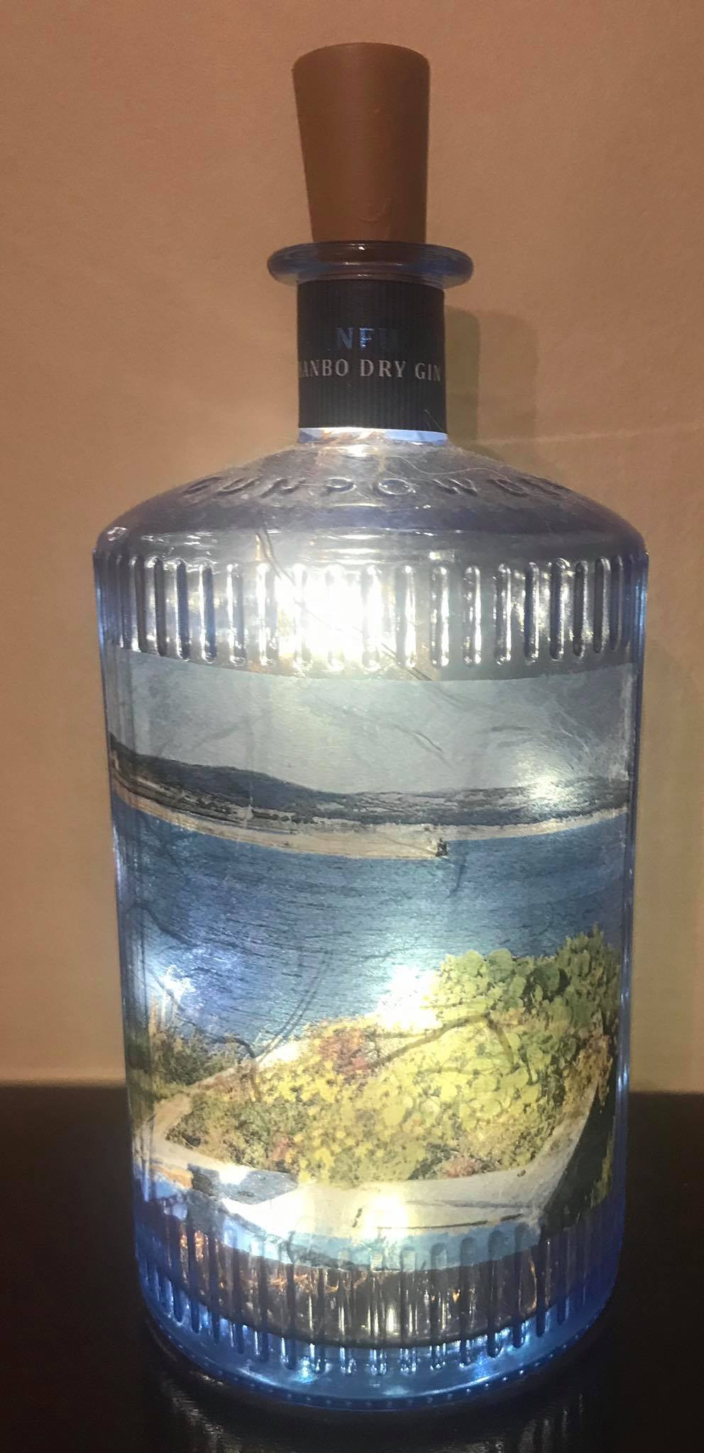 Scene of Wicklow Light Up Bottle