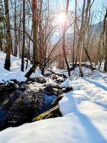 natura in valle di blenio ruscellojpg
