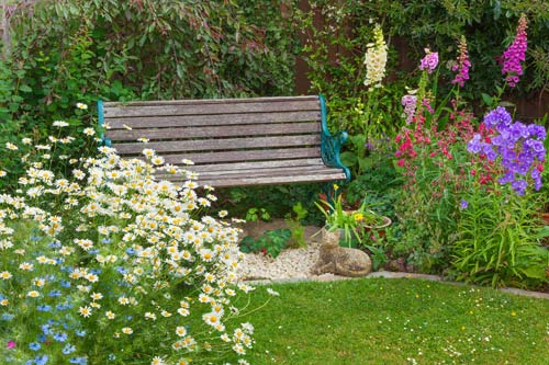 Cottage Garden with seating bench amongst cottage planting