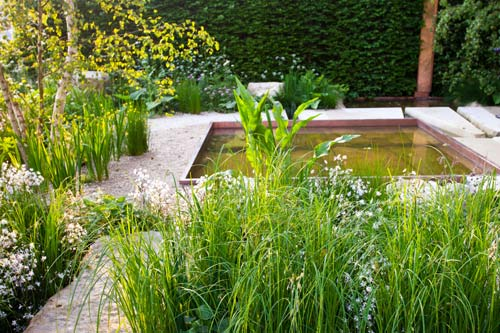 Formal Water Garden with architectural grasses