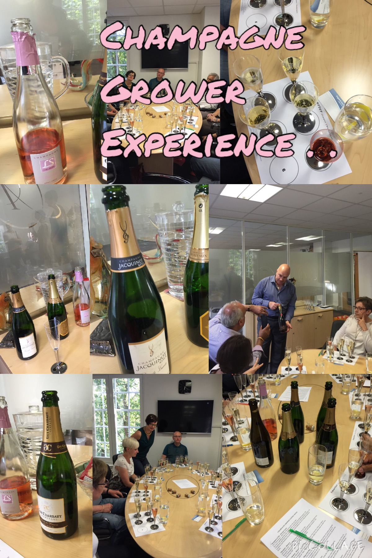 Champagne Grower Experience