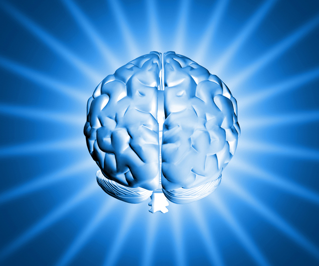 shiny-brain-1150907-639x532jpg